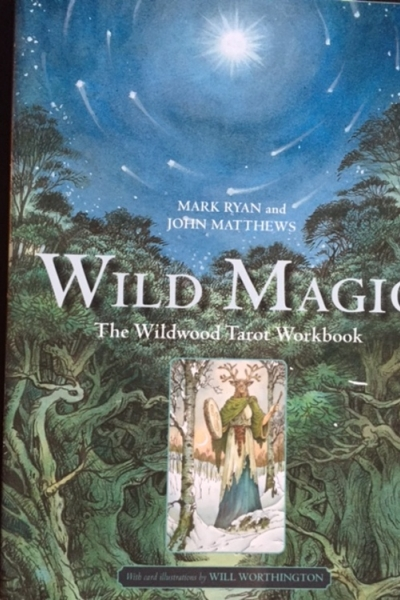 Wild Magic by Mark Ryan & John Matthews